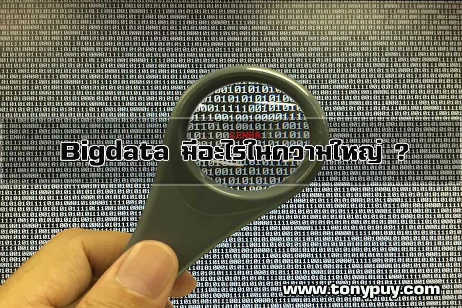 Bigdata มีอะไรในความใหญ่ ?